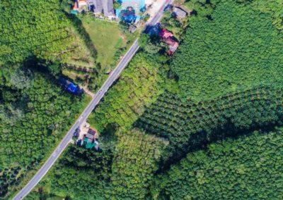 Drones de uso agrícola