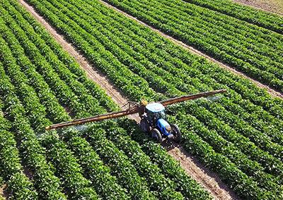 Soluciones innovadoras para la agricultura